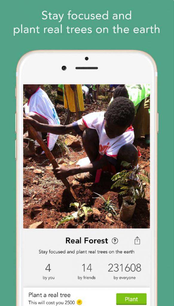 Pianta alberi veri forest app